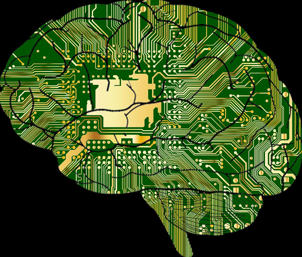 脳の取扱い方(ブレインフィットネス)オンライン講座